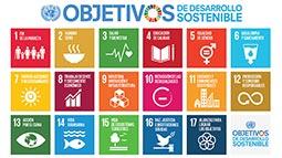 MOOC para aplicar los ODS