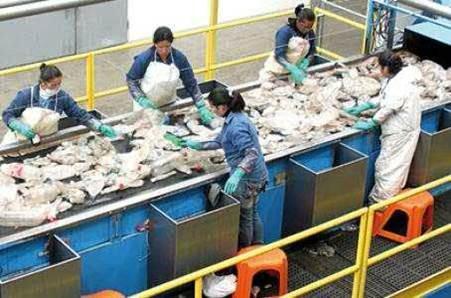 beneficios del reciclaje renueva